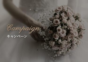 Campaign-キャンペーン