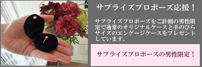 ミニケース.jpg