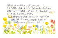 YNMS (3).JPG